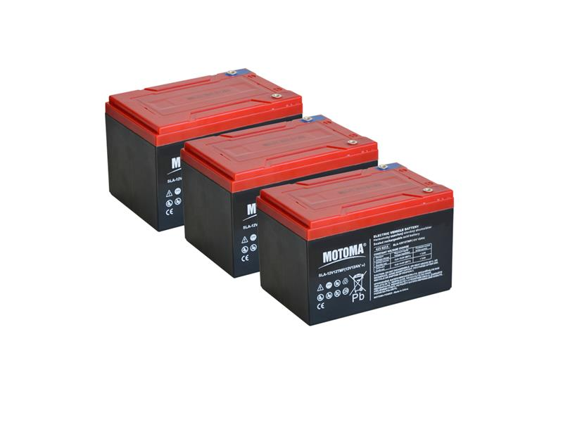 Trakční olověný akumulátor 36V 12Ah MOTOMA