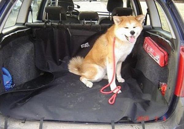 Camon Ochranná deka do kufru auta, , 140x120cm