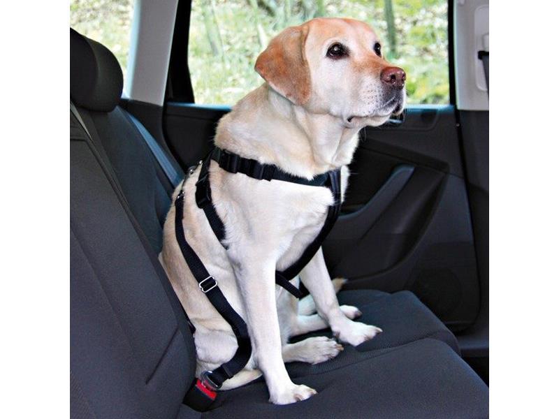 Trixie postroj bezpečnostní auto XL 80-110cm