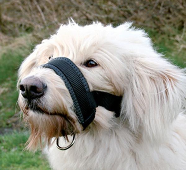 Náhubek pro psa TRIXIE XL 23 - 34 cm