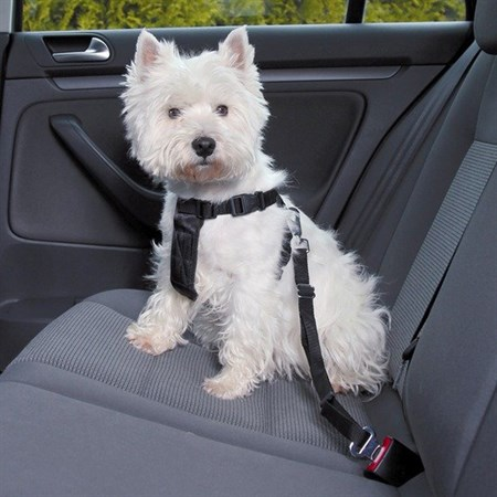 Postroj pro psy TRIXIE do auta XS (20-50 cm)