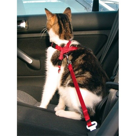 Postroj pro kočky TRIXIE do auta 20-50 cm