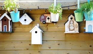 Víte, jak vyrobit ptačí budku?