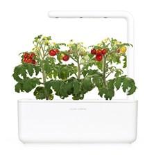 Záhradka domáci SMART GARDEN 3 WHITE